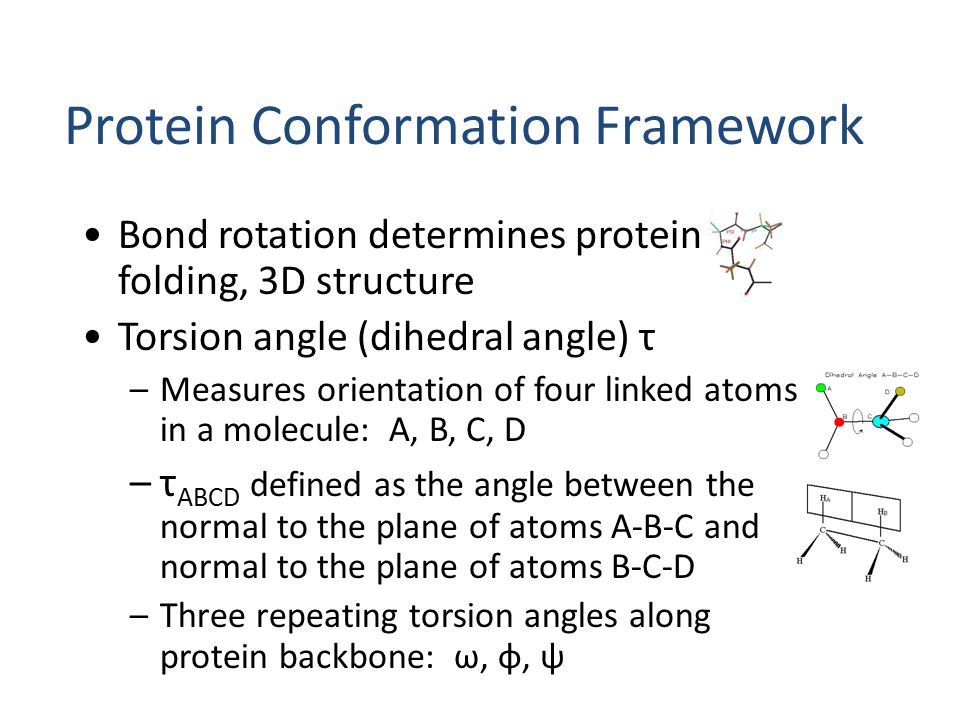 Protein Conformation Framework Bond rotation determines protein folding, 3D structure Torsion angle (dihedral angle) τ –Measures orientation of four l