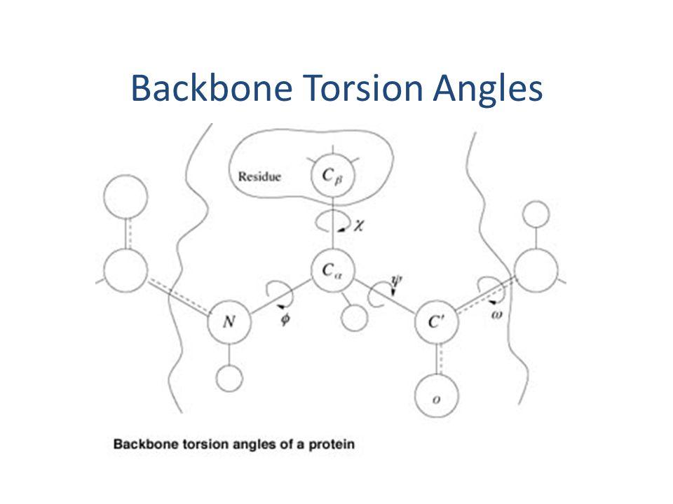 Backbone Torsion Angles