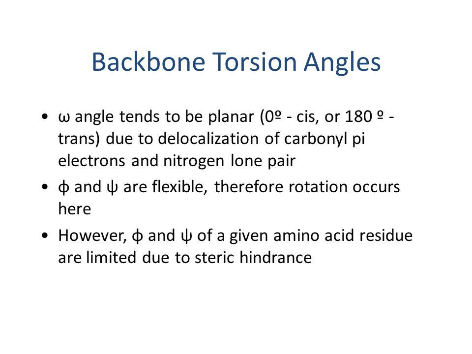 ω angle tends to be planar (0º - cis, or 180 º - trans) due to delocalization of carbonyl pi electrons and nitrogen lone pair φ and ψ are flexible, th