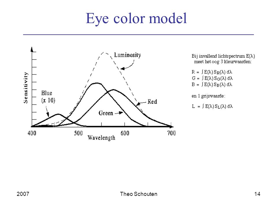 2007Theo Schouten14 Eye color model