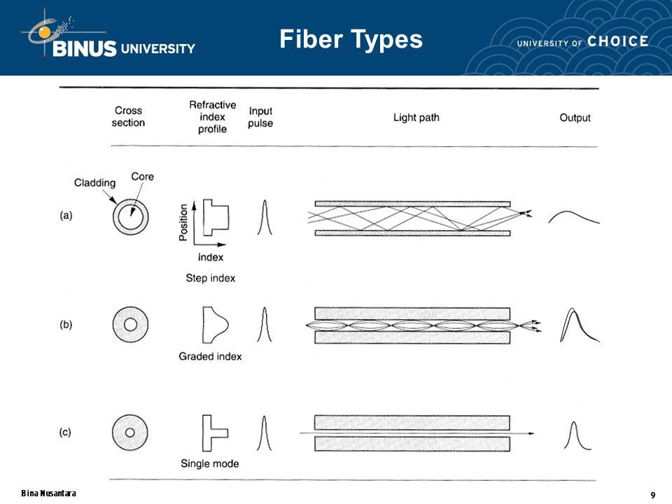 Bina Nusantara 9 Fiber Types