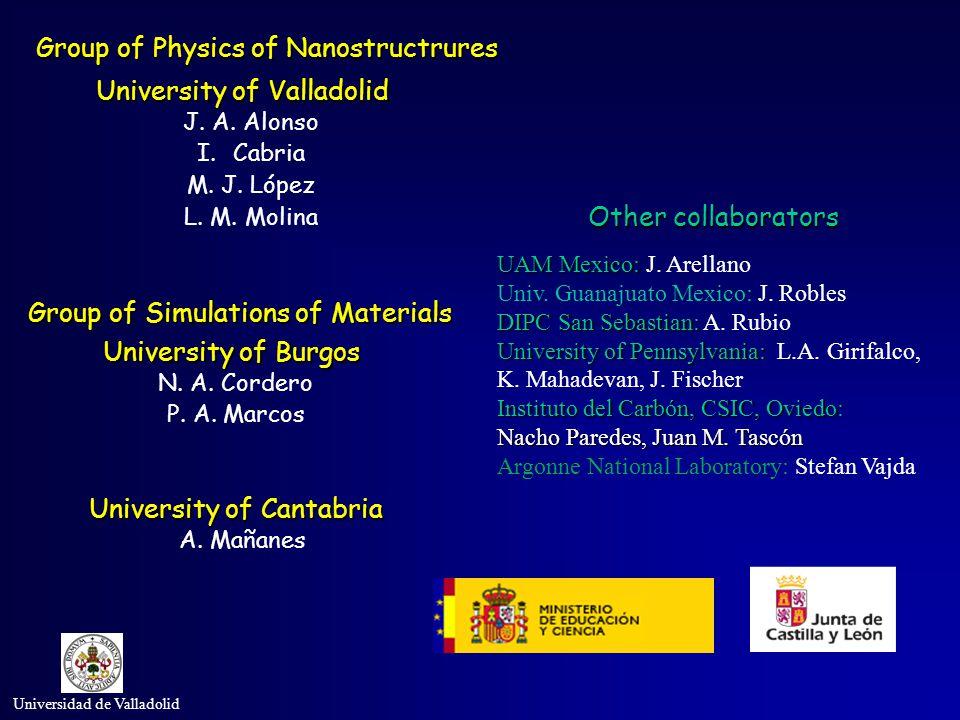 Universidad de Valladolid Group of Physics of Nanostructrures University of Valladolid J. A. Alonso I.Cabria M. J. López L. M. Molina University of Ca
