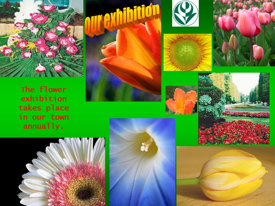 The flower exhibition takes place in our town annually.