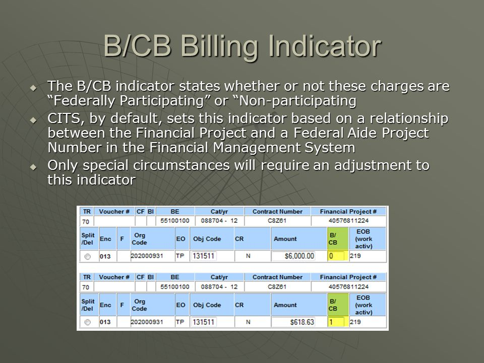 "B/CB Billing Indicator  The B/CB indicator states whether or not these charges are ""Federally Participating"" or ""Non-participating  CITS, by default"