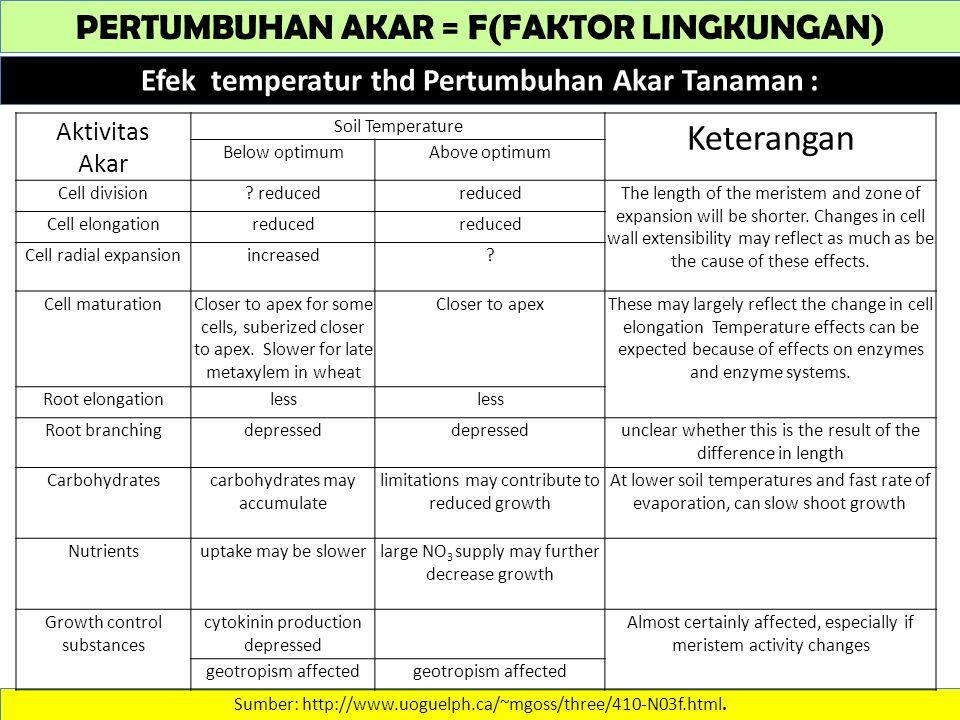 PERTUMBUHAN AKAR = F(FAKTOR LINGKUNGAN) Efek temperatur thd Pertumbuhan Akar Tanaman : Sumber: http://www.uoguelph.ca/~mgoss/three/410-N03f.html.