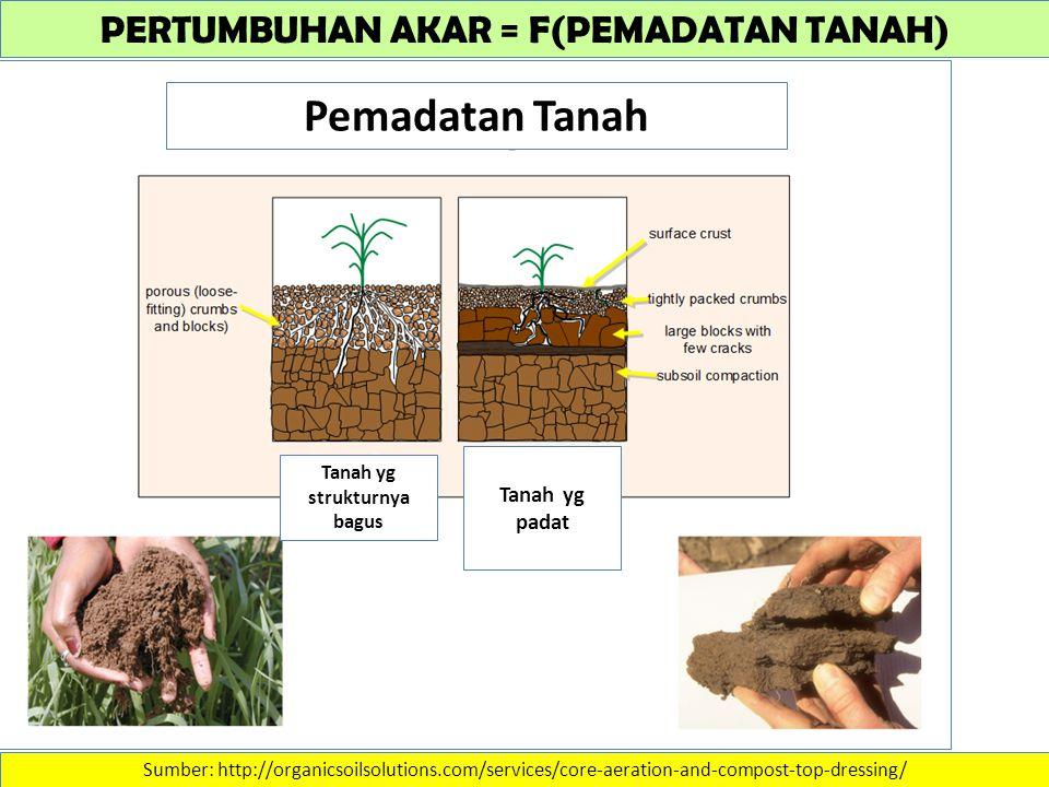 PERTUMBUHAN AKAR = F(PEMADATAN TANAH) Sumber: http://organicsoilsolutions.com/services/core-aeration-and-compost-top-dressing/ Pemadatan Tanah Tanah yg strukturnya bagus Tanah yg padat