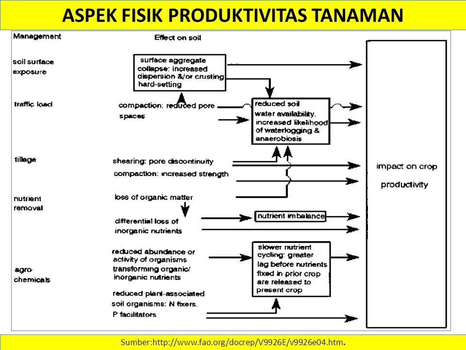 Sumber:http://www.fao.org/docrep/V9926E/v9926e04.htm. ASPEK FISIK PRODUKTIVITAS TANAMAN