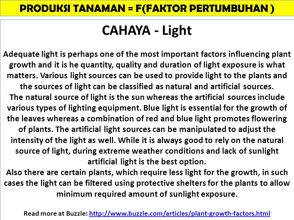 CAHAYA - Light Adequate light is perhaps one of the most important factors influencing plant growth and it is he quantity, quality and duration of light exposure is what matters.