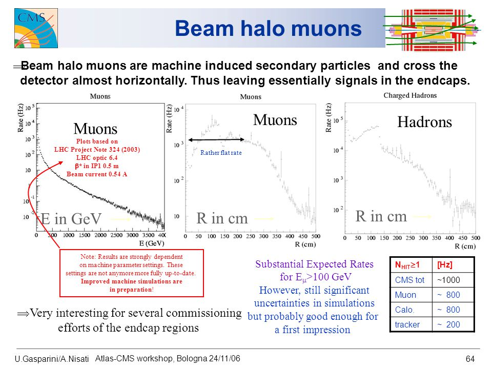 U.Gasparini/A.Nisati Atlas-CMS workshop, Bologna 24/11/06 64 Beam halo muons  Beam halo muons are machine induced secondary particles and cross the d