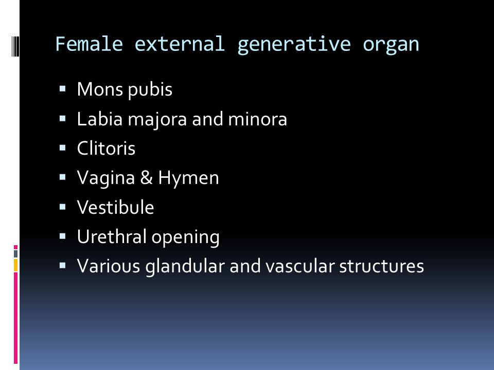 Female external generative organ  Mons pubis  Labia majora and minora  Clitoris  Vagina & Hymen  Vestibule  Urethral opening  Various glandular and vascular structures