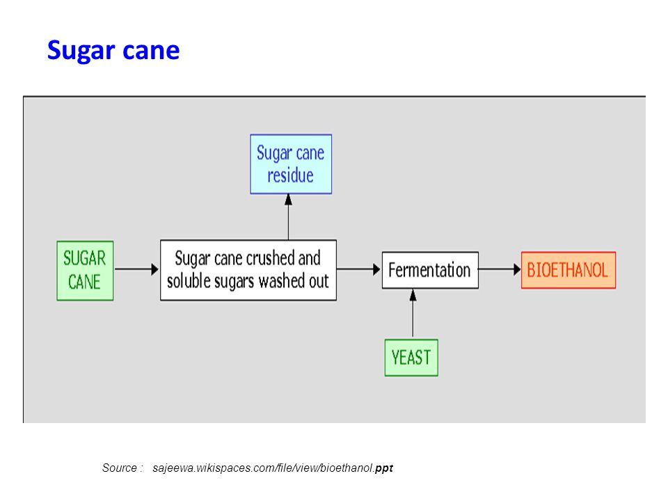 Sugar cane Source : sajeewa.wikispaces.com/file/view/bioethanol.ppt
