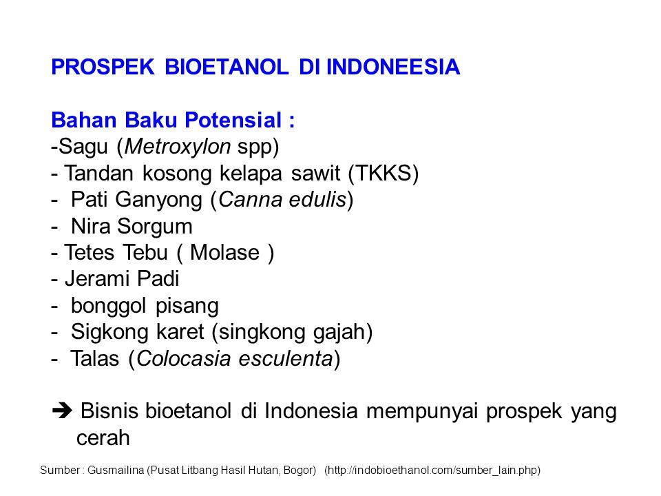 PROSPEK BIOETANOL DI INDONEESIA Bahan Baku Potensial : -Sagu (Metroxylon spp) - Tandan kosong kelapa sawit (TKKS) - Pati Ganyong (Canna edulis) - Nira