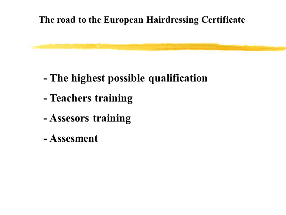 The European Hairdressing Certificate, presentation 3.