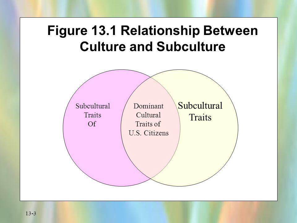 13-3 Figure 13.1 Relationship Between Culture and Subculture Subcultural Traits Of Dominant Cultural Traits of U.S. Citizens Subcultural Traits