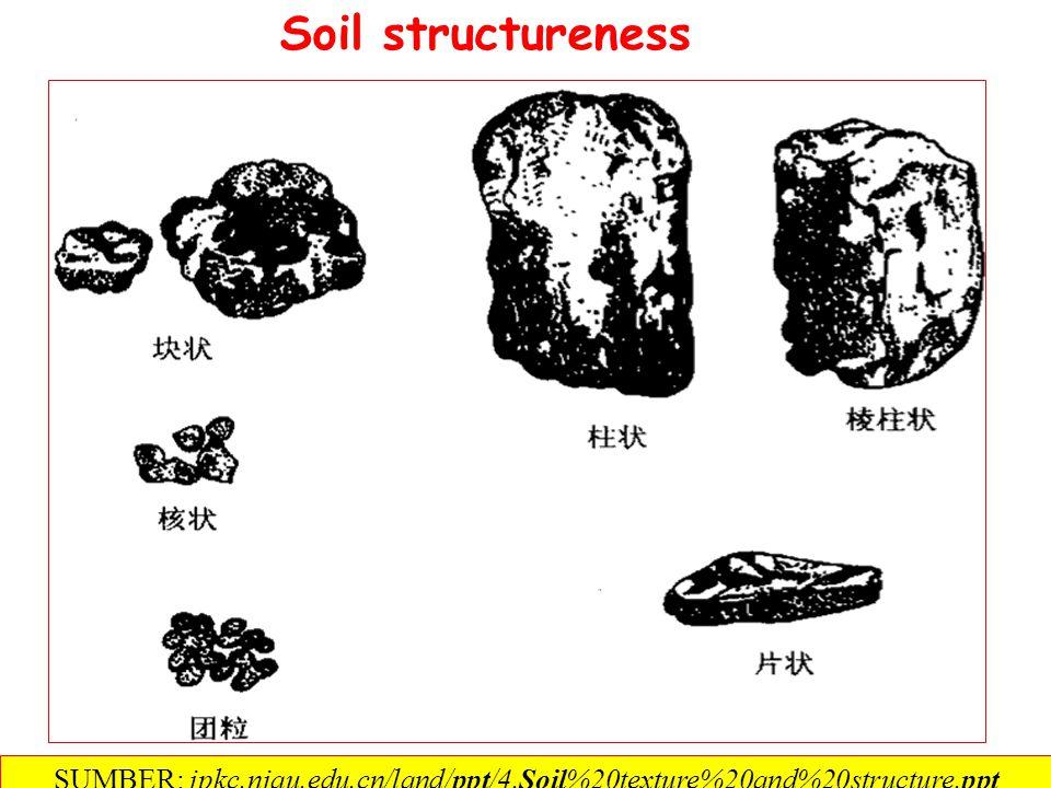 一、 Soil structureness (一) Concept of soil structure Soil structure- The combination or arrangement of primary soil particles into secondary units or peds.