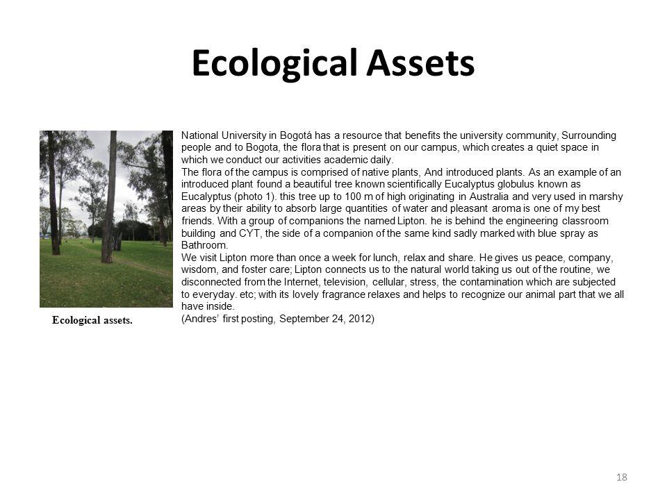 Ecological Assets Ecological assets.