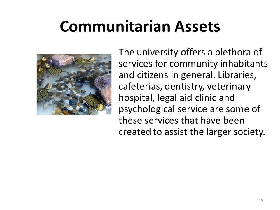 Communitarian Assets The university offers a plethora of services for community inhabitants and citizens in general.