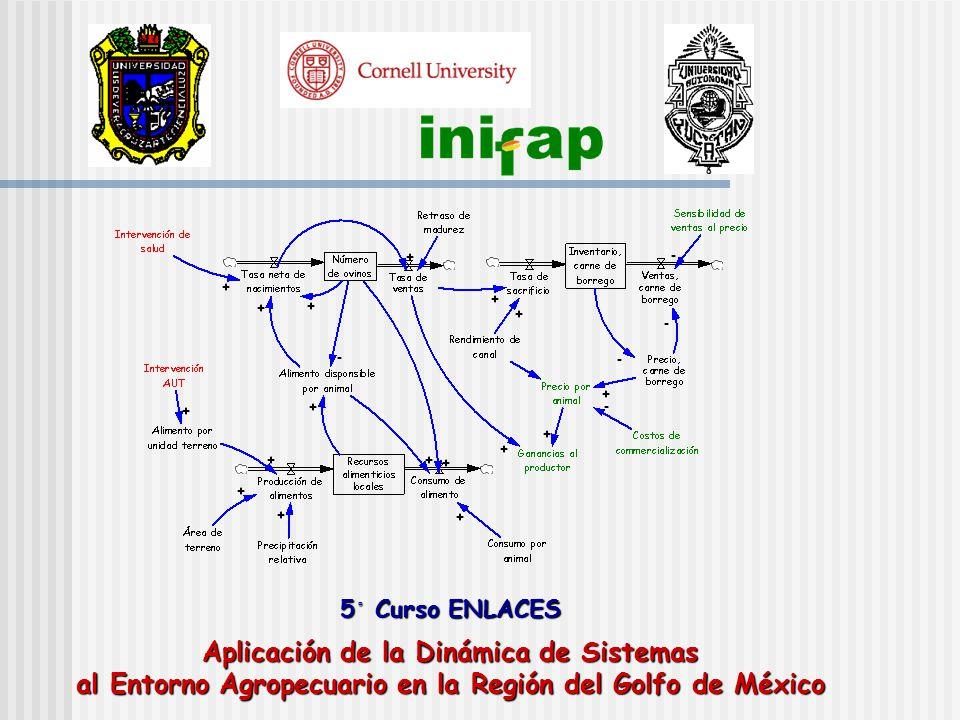5 ◦ Curso ENLACES Aplicación de la Dinámica de Sistemas al Entorno Agropecuario en la Región del Golfo de México