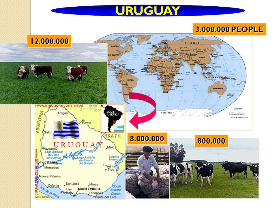 URUGUAY 12.000.000 800.000 8.000.000 3.000.000 PEOPLE