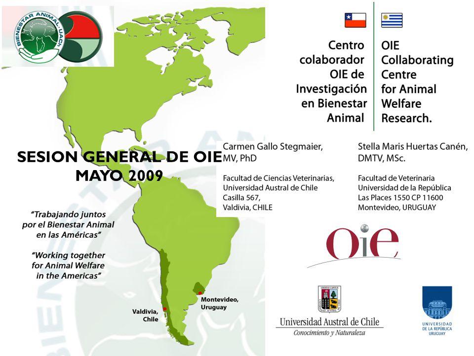 SESION GENERAL DE OIE MAYO 2009