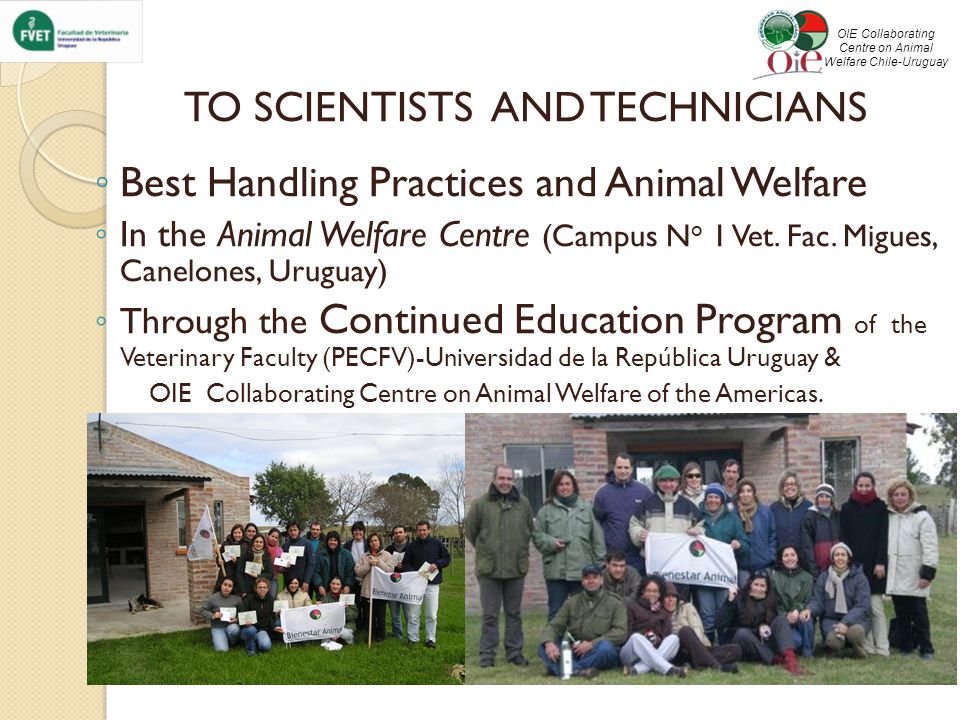TO SCIENTISTS AND TECHNICIANS ◦ Best Handling Practices and Animal Welfare ◦ In the Animal Welfare Centre (Campus N o 1 Vet.