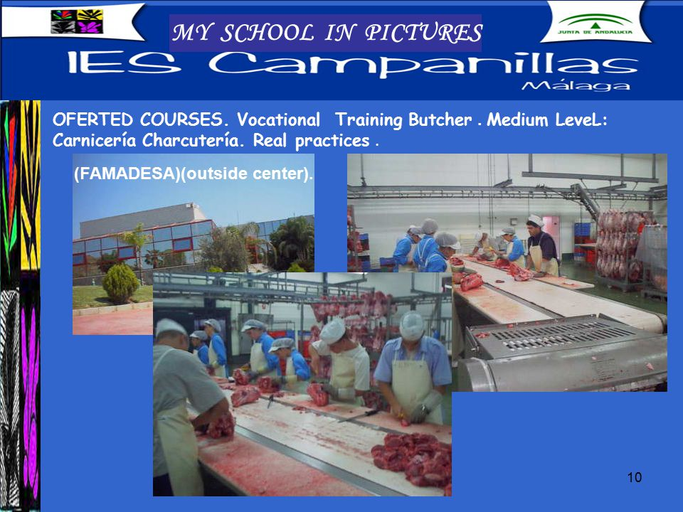 10 MY SCHOOL IN PICTURES OFERTED COURSES. Vocational Training Butcher.