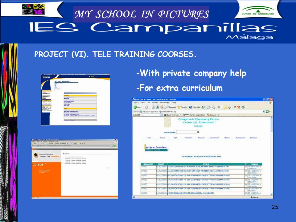 25 MY SCHOOL IN PICTURES PROJECT (VI). TELE TRAINING COORSES.
