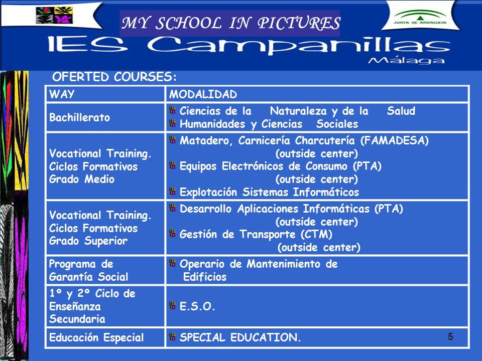 5 MY SCHOOL IN PICTURES OFERTED COURSES: WAYMODALIDAD Bachillerato Ciencias de la Naturaleza y de la Salud Humanidades y Ciencias Sociales Vocational Training.