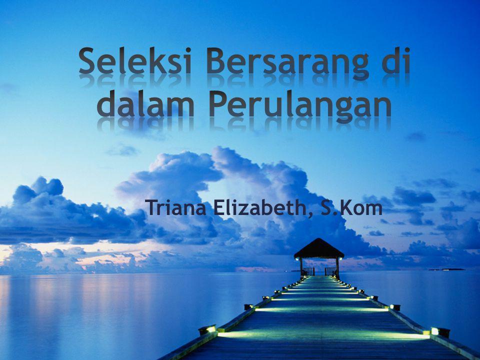 Triana Elizabeth, S.Kom