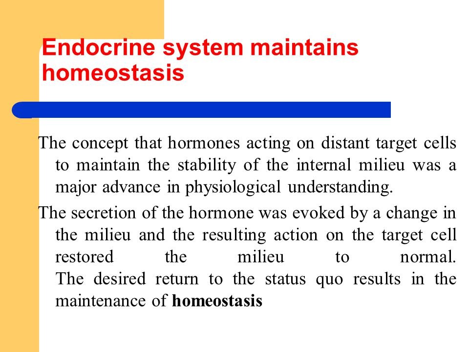 Endocrine system maintains homeostasis The concept that hormones acting on distant target cells to maintain the stability of the internal milieu was a major advance in physiological understanding.