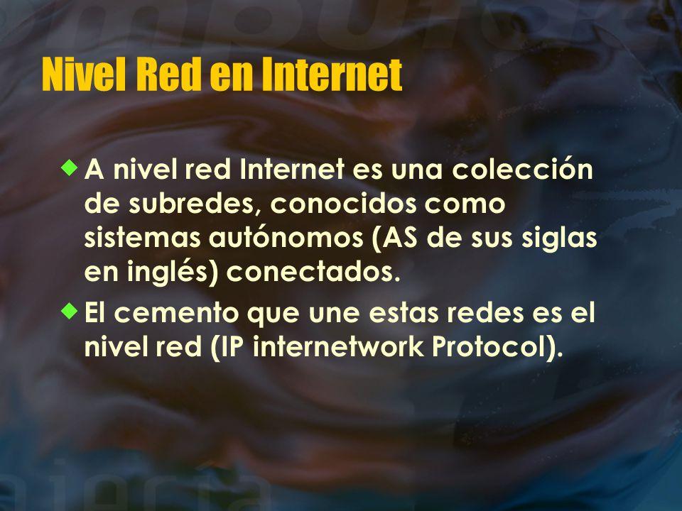 Nivel Red en Internet  A nivel red Internet es una colección de subredes, conocidos como sistemas autónomos (AS de sus siglas en inglés) conectados.