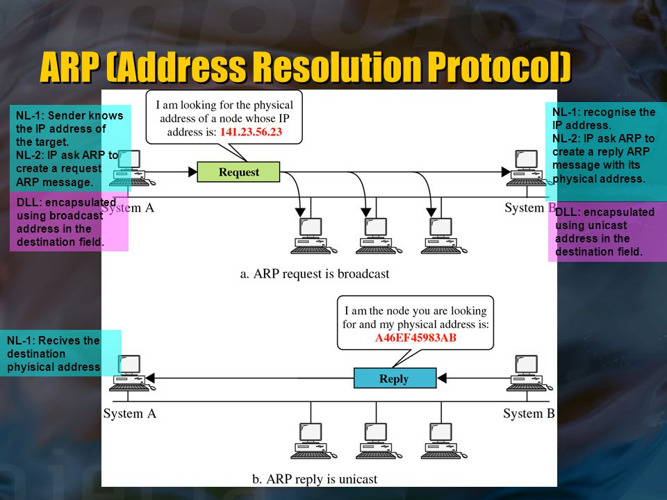 NL-1: Sender knows the IP address of the target. NL-2: IP ask ARP to create a request ARP message.