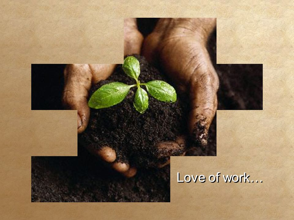 Love of work… Love of work…