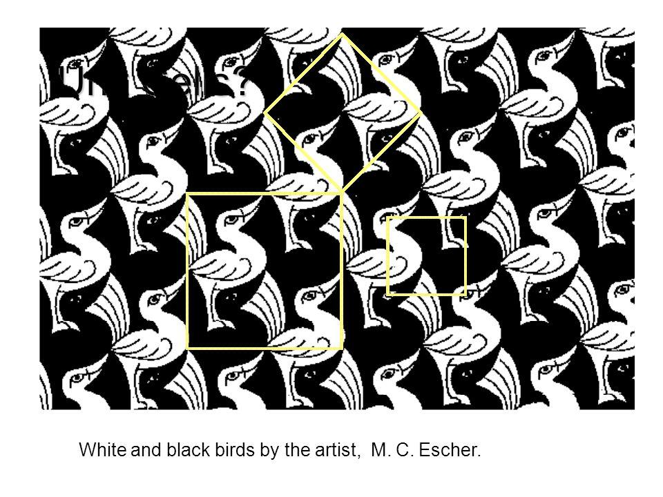 Unit Cells? White and black birds by the artist, M. C. Escher.