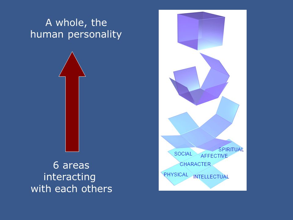PHYSICAL INTELLECTUAL SOCIAL CHARACTER AFFECTIVE SPIRITUAL 6 areas interacting with each others A whole, the human personality