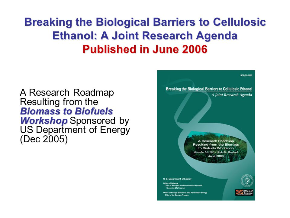Breaking the Biological Barriers to Cellulosic Ethanol: A Joint Research Agenda Published in June 2006 Biomass to Biofuels Workshop A Research Roadmap Resulting from the Biomass to Biofuels Workshop Sponsored by US Department of Energy (Dec 2005)