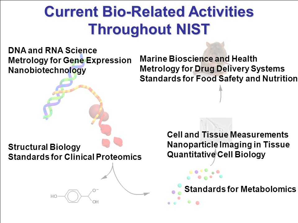 Current Bio-Related Activities Throughout NIST Marine Bioscience and Health Metrology for Drug Delivery Systems Standards for Food Safety and Nutritio