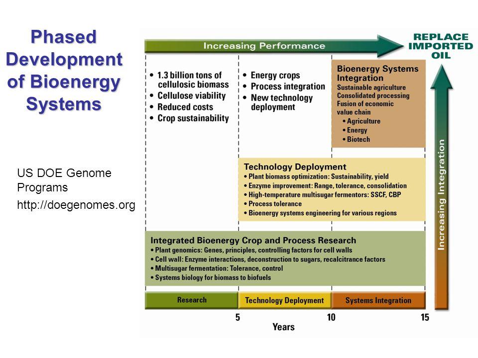 Phased Development of Bioenergy Systems US DOE Genome Programs http://doegenomes.org