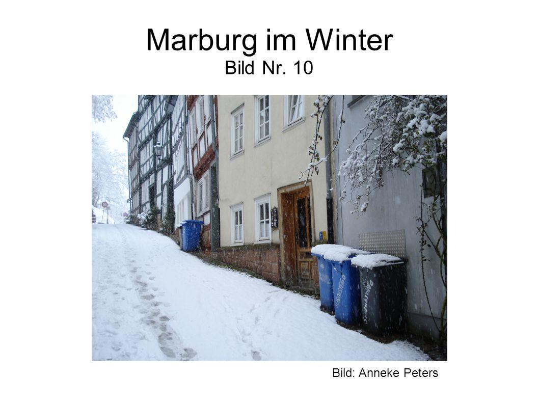 Marburg im Winter Bild Nr. 10 Bild: Anneke Peters