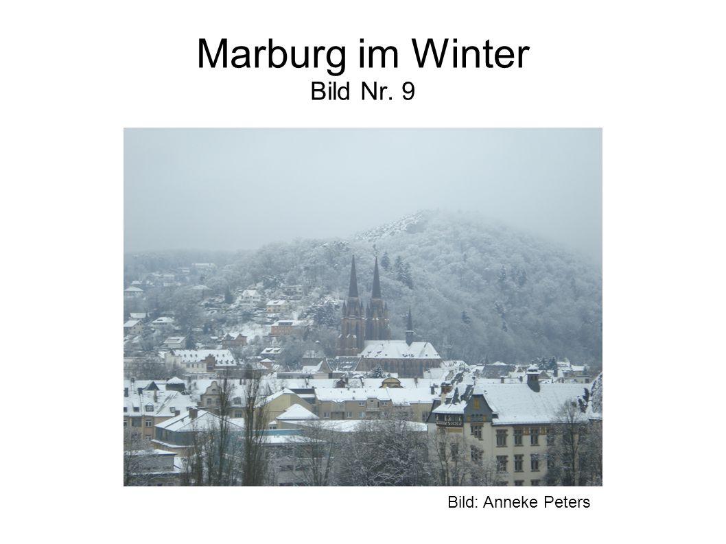 Marburg im Winter Bild Nr. 9 Bild: Anneke Peters