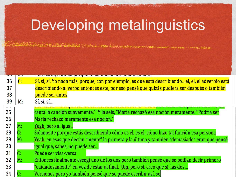 Developing metalinguistics