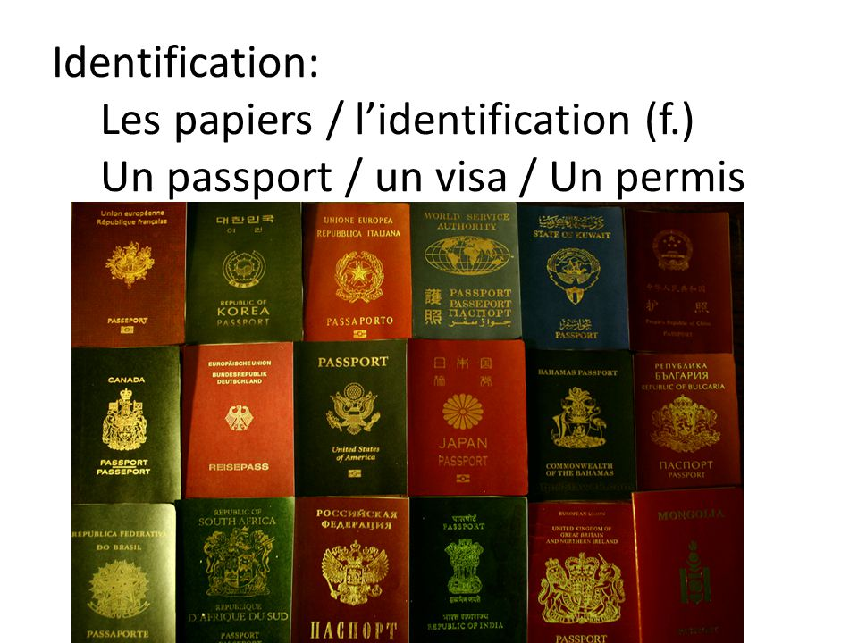 Identification: Les papiers / l'identification (f.) Un passport / un visa / Un permis