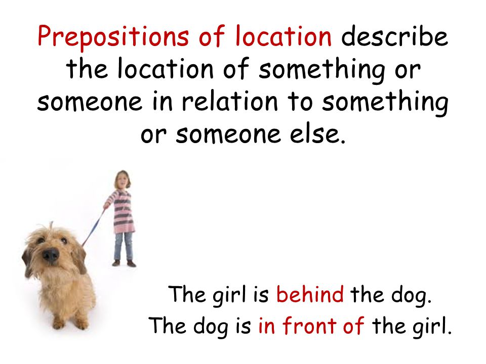 Prepositions of location describe the location of something or someone in relation to something or someone else. The girl is behind the dog. The dog i
