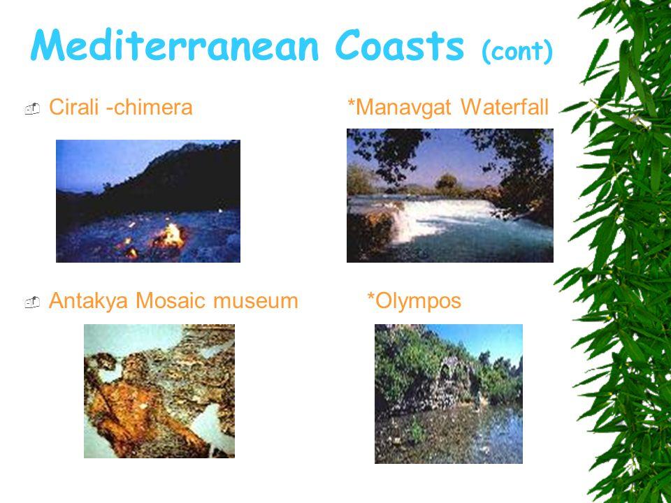 Mediterranean Coasts (cont)  Cirali -chimera *Manavgat Waterfall  Antakya Mosaic museum *Olympos
