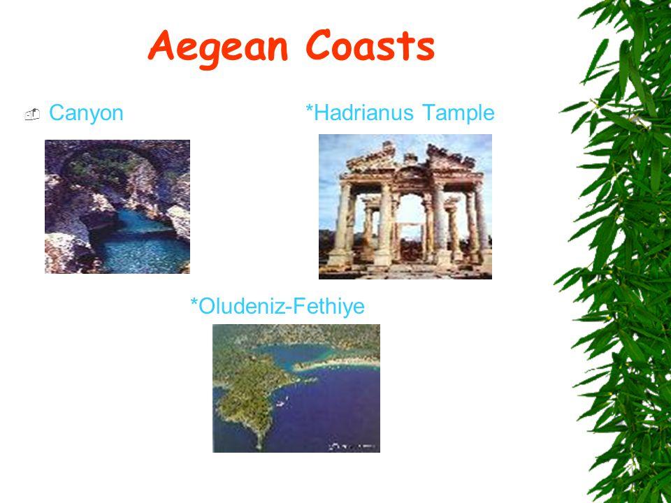 Aegean Coasts  Canyon *Hadrianus Tample *Oludeniz-Fethiye