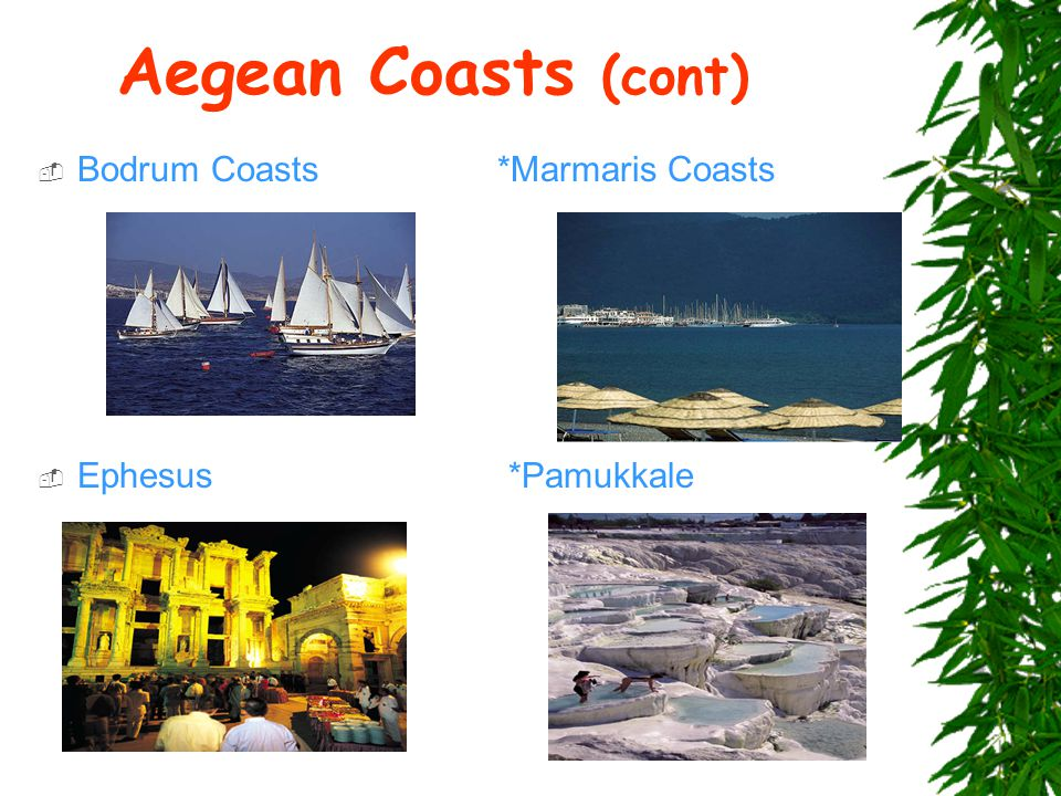 Aegean Coasts (cont)  Bodrum Coasts *Marmaris Coasts  Ephesus *Pamukkale