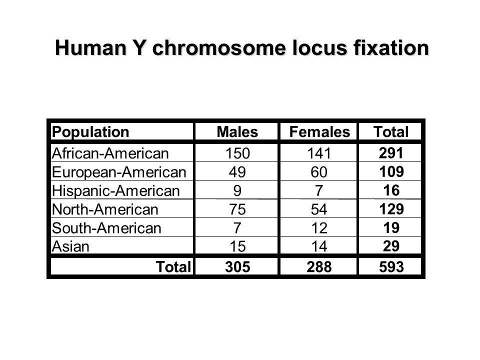 Human Y chromosome locus fixation PopulationMalesFemalesTotal African-American150141 291 European-American4960 109 Hispanic-American97 16 North-American7554 129 South-American712 19 Asian1514 29 Total305288593