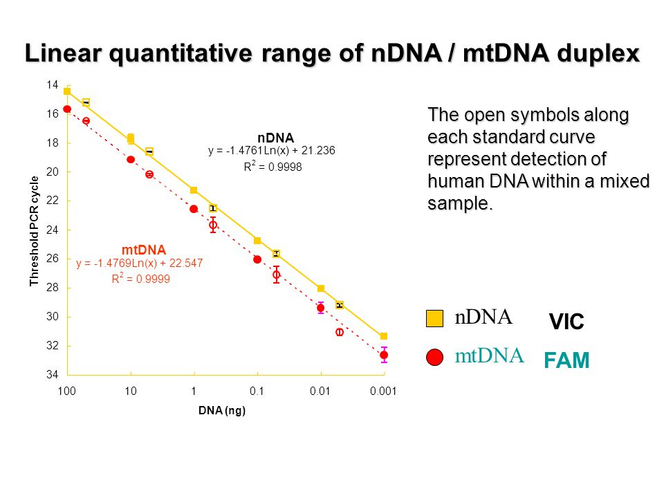 Linear quantitative range of nDNA / mtDNA duplex The open symbols along each standard curve represent detection of human DNA within a mixed sample.