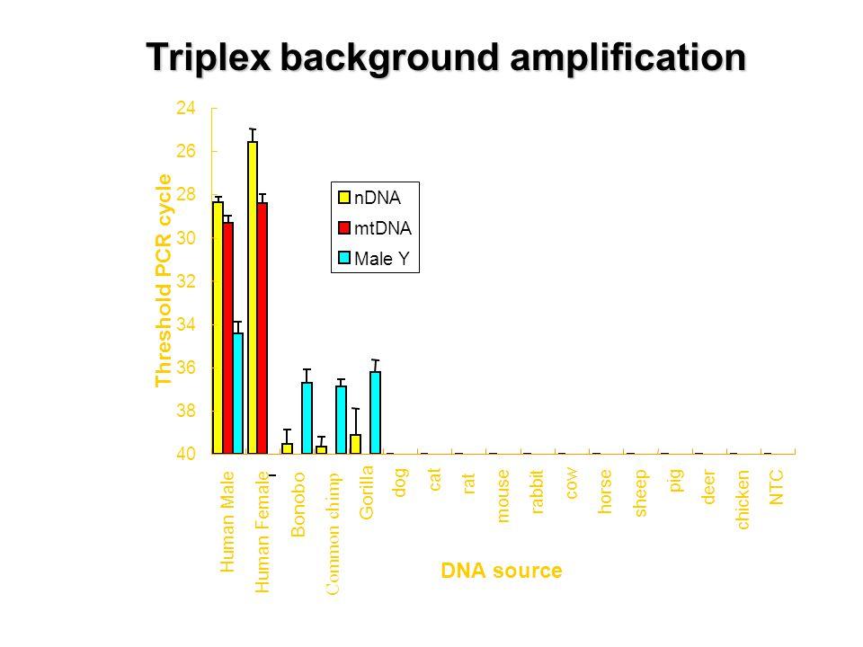 Triplex background amplification