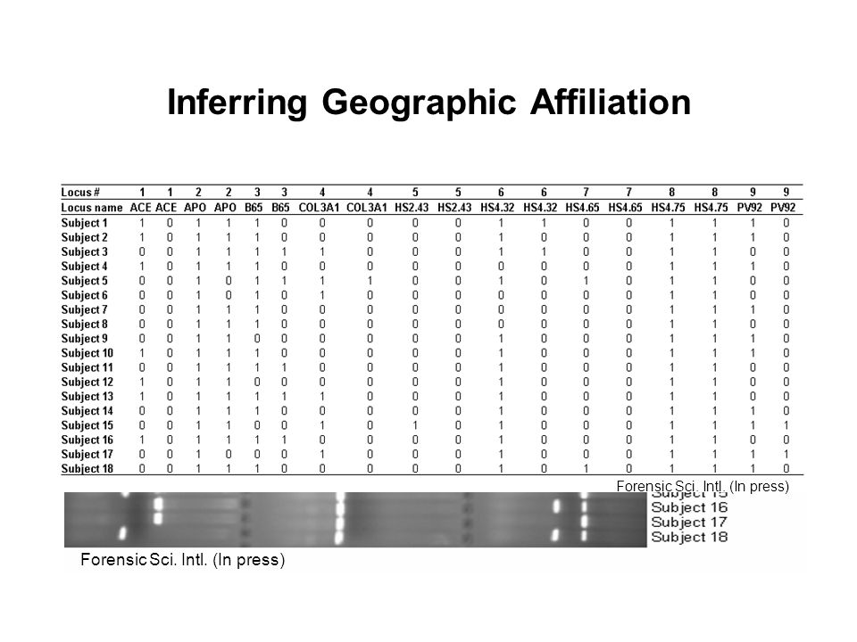Inferring Geographic Affiliation 1)Series of genetic markers (100 Alu loci) 2)Database of human variation (currently 715 individuals of known ancestry) 3)Genotype unknown sample 4)Analytical approach (Structure analysis) Forensic Sci.